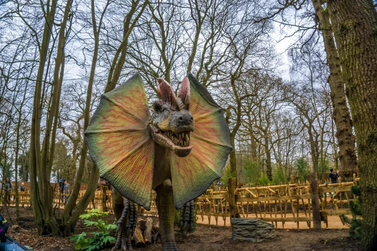 world-of-dinosaurs-paradise-wildlife-park