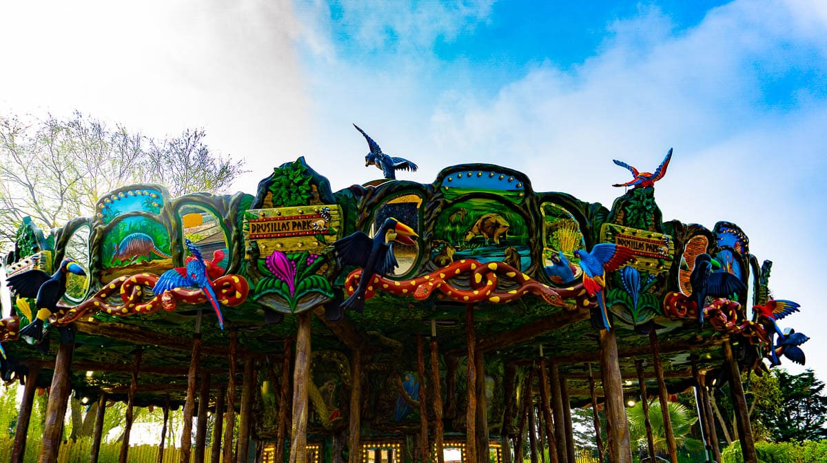 Days out: Drusillas & The New Rainforest Carousel